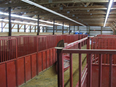 Carver County Fair Horse Barn